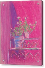 Pink Geraniums Acrylic Print by Marcia Meade