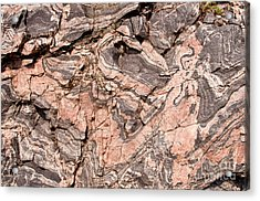 Acrylic Print featuring the photograph Pink Gneiss Rock by Les Palenik