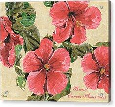 Pink Hibiscus Acrylic Print by Debbie DeWitt