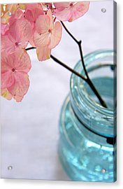 Acrylic Print featuring the photograph Pink Hydrangea No. 1 by Brooke T Ryan