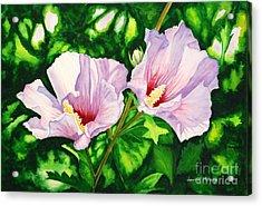 Pink Ladies Acrylic Print by Laura Hwang