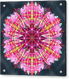 Pink Lightning Acrylic Print by Derek Gedney
