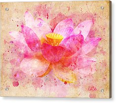 Pink Lotus Flower Abstract Artwork Acrylic Print by Nikki Marie Smith