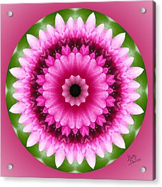 Acrylic Print featuring the photograph Pink Lotus Kaleidoscope by Betty Denise