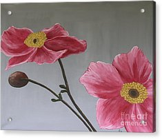 Pink Mexican Aster  - Sold Acrylic Print by Christiane Schulze Art And Photography
