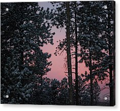 Pink Mountain Morning Acrylic Print