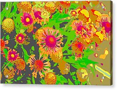 Acrylic Print featuring the photograph Pink Orange Flowers by Suzanne Powers