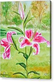 Pink Oriental Lillies Acrylic Print by Kathryn Duncan