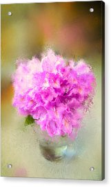 Pink Painted Rhododendrom Acrylic Print by Mary Timman