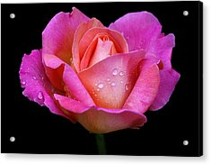 Acrylic Print featuring the photograph Pink Pearl by Doug Norkum