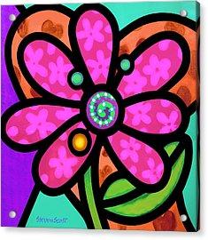 Pink Pinwheel Daisy Acrylic Print