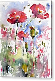 Pink Poppies Pods And Bees Watercolor By Ginette Acrylic Print