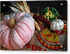 Pink Pumpkin Acrylic Print