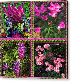 Pink Purple Flowers Captured At The Riverside Ridge At Oakville Ontario Canada Collage Beautiful     Acrylic Print by Navin Joshi