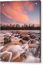 Pink Rapids Acrylic Print by Davorin Mance