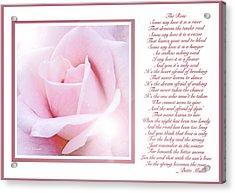 Pink Rose And Song Lyrics Acrylic Print by A Gurmankin