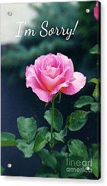Pink Rose Greeting Card Acrylic Print by Ellen Stanton