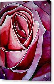 Pink Rose Macro Acrylic Print by Sacha Grossel