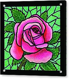 Pink Rose Number 5 Acrylic Print by Jim Harris