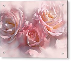 Pink Roses In The Mist Acrylic Print by Jennie Marie Schell