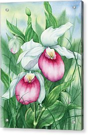 Pink Showy Lady Slippers Acrylic Print