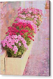 Pink Sidewalk Flowerbox Acrylic Print