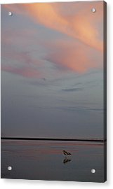 Acrylic Print featuring the photograph Pink Sky And Sand by Kjirsten Collier