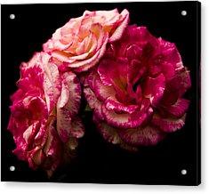Pink Solitude Acrylic Print