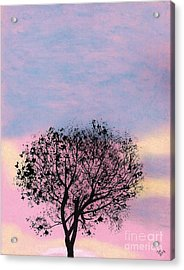 Acrylic Print featuring the drawing Pink Sunset by D Hackett
