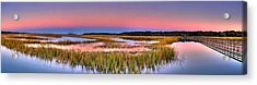 Pink Sunset Acrylic Print by Ed Roberts