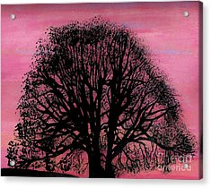 Acrylic Print featuring the drawing Pink Sunset Tree by D Hackett