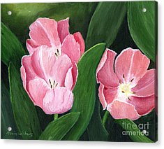 Pink Tulips Acrylic Print by Maria Williams