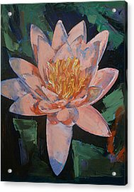 Pink Water Lily Acrylic Print by Michael Creese