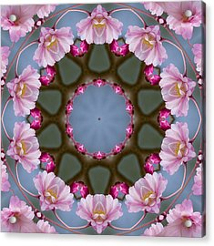 Pink Weeping Cherry Blossom Kaleidoscope Acrylic Print by Kathy Clark