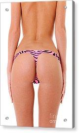 Pink Zebra Thong Acrylic Print by Jt PhotoDesign