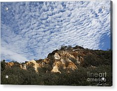 Pinnacles Of Fraser Island Acrylic Print