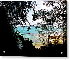 Acrylic Print featuring the photograph Picturesque by Amar Sheow