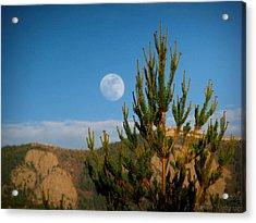 Pinyon Moon Acrylic Print
