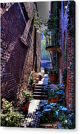 Pioneer Square Garden Pathway Acrylic Print by David Patterson