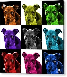 Pitbull Puppy Pop Art - 7085 V1 - M Acrylic Print by James Ahn