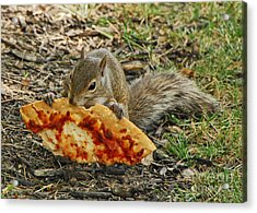 Pizza For  Lunch Acrylic Print by Mary Carol Story