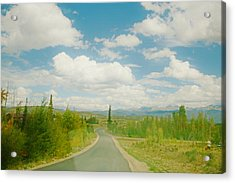 Acrylic Print featuring the photograph Places To Go And Things To Do by Shirley Heier