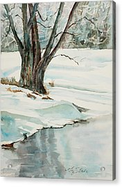 Placid Winter Morning Acrylic Print by Mary Benke
