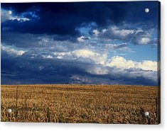 Acrylic Print featuring the photograph Plain Sky by Rodney Lee Williams