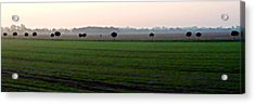 Acrylic Print featuring the photograph Plaine Allemande A Grande Vitesse by Marc Philippe Joly