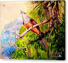 Acrylic Print featuring the painting Plaintive Cuckoo by Jason Sentuf