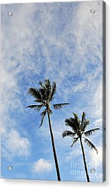 Plam Trees At Sunrise Acrylic Print