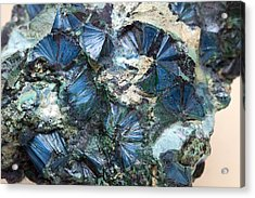 Plancheite Mineral Acrylic Print by Science Photo Library
