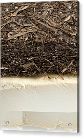 Plant-based Insulating Materials Acrylic Print by Science Photo Library