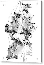 Plant Foliage And Bark Shavings Acrylic Print by Albert Koetsier X-ray